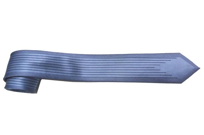 Ca vat mau xanh ban nho CV120E  1