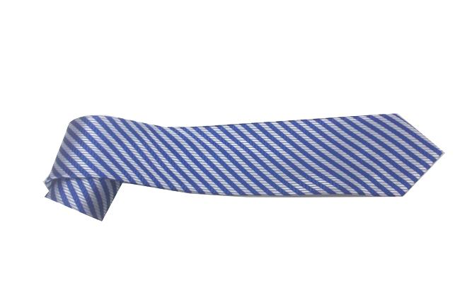 Ca vat ban vua mau xanh soc  CV301
